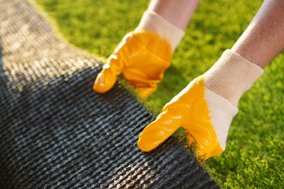 hand grass experts orlando DIY